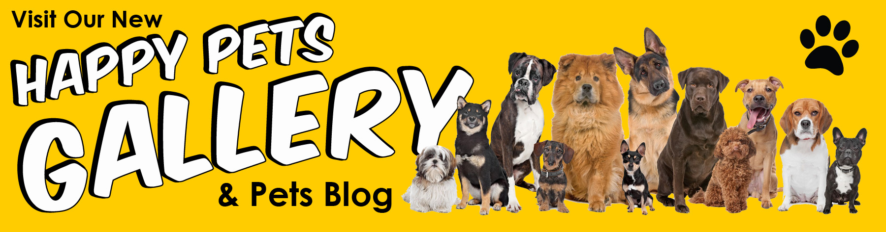 Visit Our New Happy Pets Gallery
